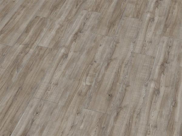 laminat kronotex exquisit plus d3662 montmelo eiche silber 4v fuge lagerix. Black Bedroom Furniture Sets. Home Design Ideas